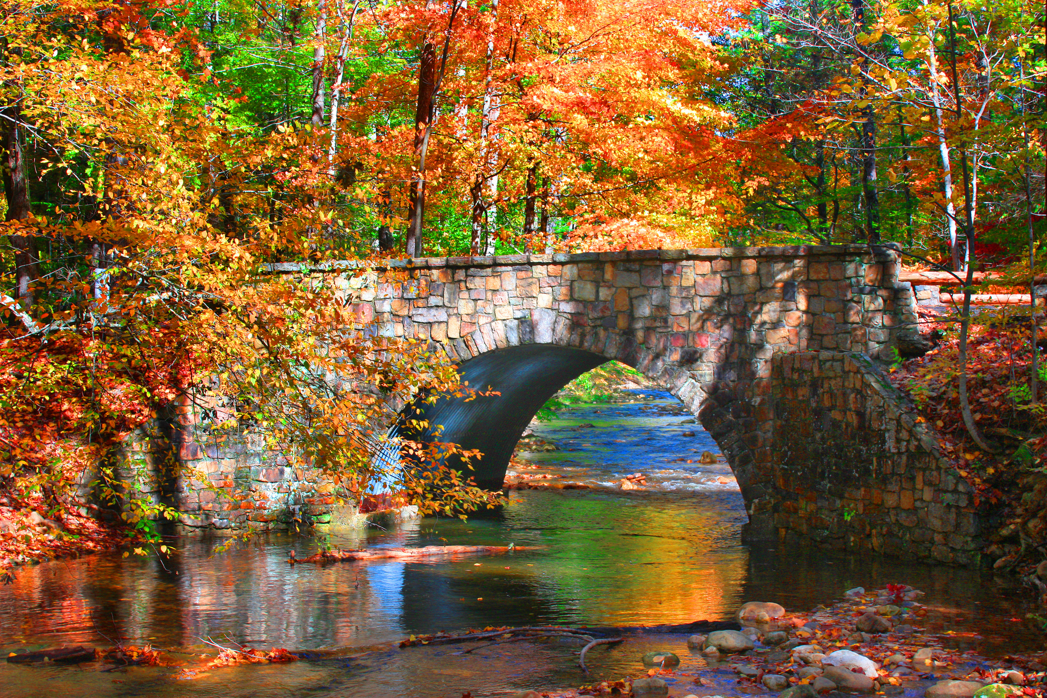 Portland Oregon Fall Had Wallpaper See Stunning Fall Foliage At These 14 Virginia State Parks