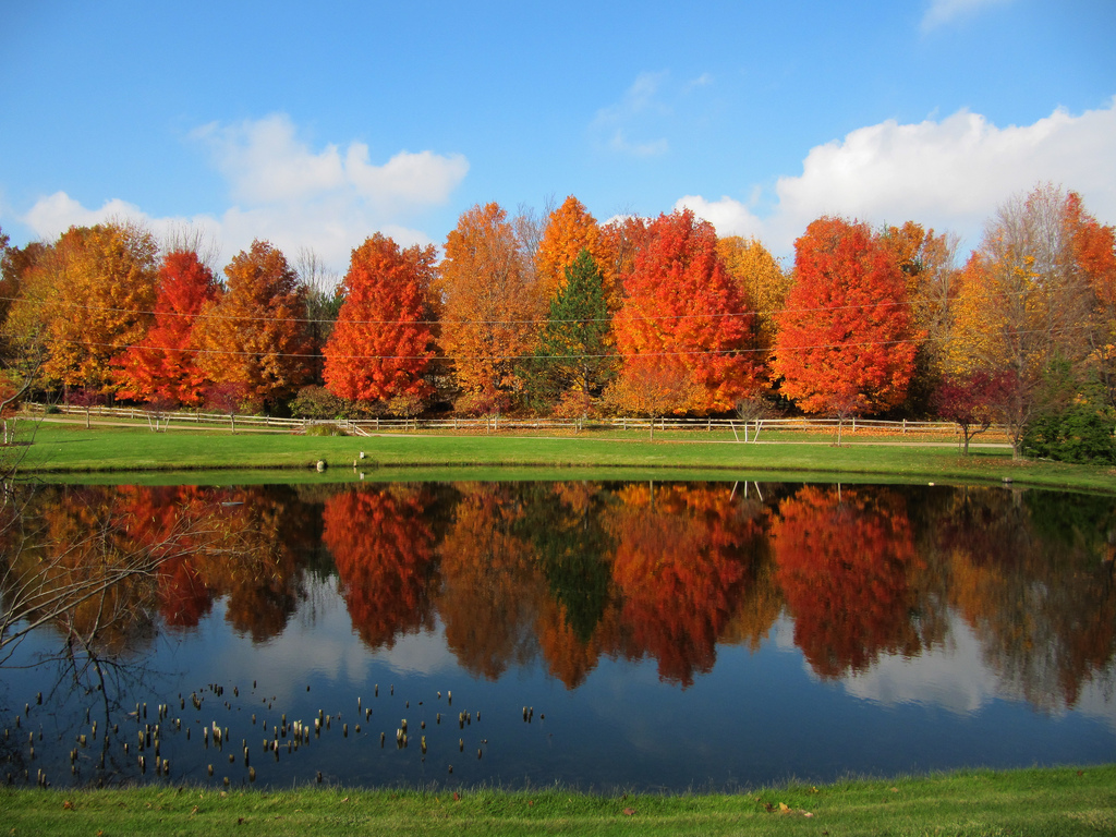 Portland Oregon Fall Had Wallpaper 10 Stunning Photos To Remind You Why Michigan Is The Best