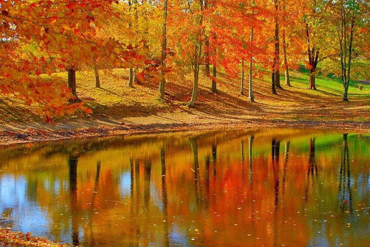 Philadelphia In The Fall Wallpaper These 10 Roads In Kentucky Are A Unforgettably Scenic Drive