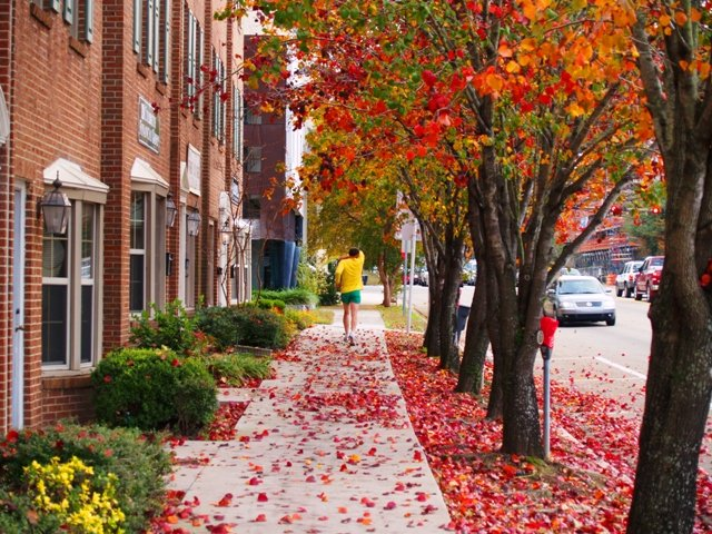 Michigan Fall Colors Wallpaper The 10 Happiest Cities In Florida