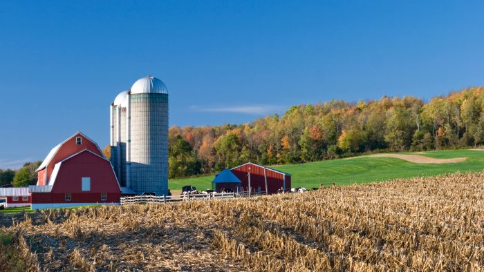 Late Fall Wallpaper Nature 15 Beautiful Farm Photos Of Minnesota