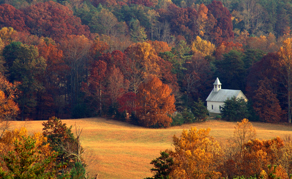 Fall Deer Wallpaper 7 Great Uncrowded Places To Visit In Tennessee