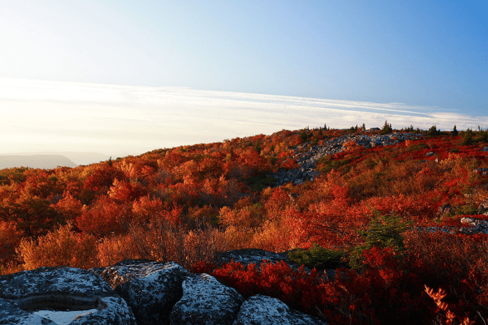 Fall In Vermont Wallpaper Bear Rocks Preserve Is One Of The Most Beautiful Places In Wv