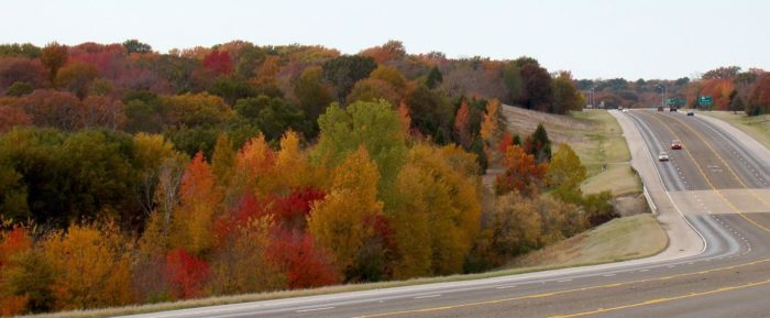Fall Woods Wallpaper 8 Country Roads In Texas With Beautiful Fall Foliage