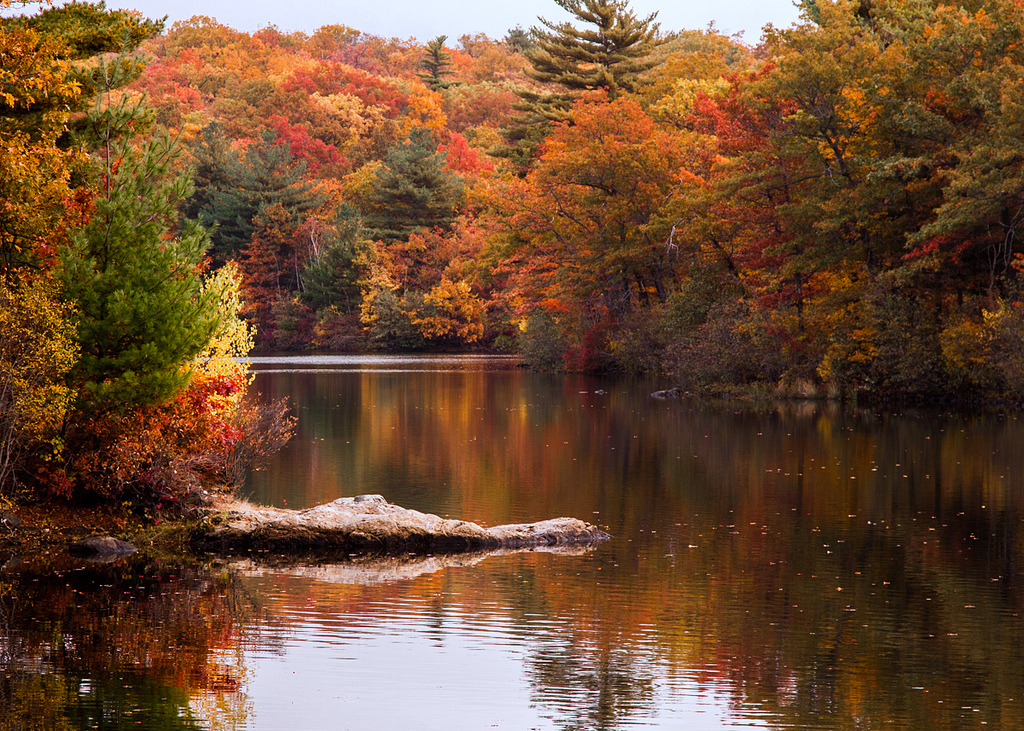 Maine Fall Foliage Wallpaper The One Hikeable Lake In Massachusetts That S Simply