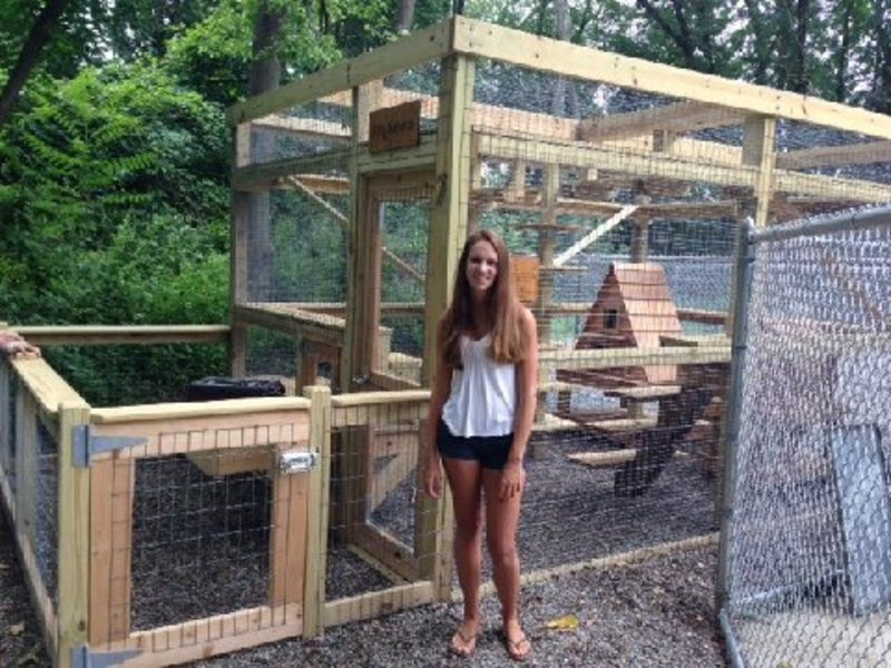 Area Girl Scout Builds Playground For Shelter Cats