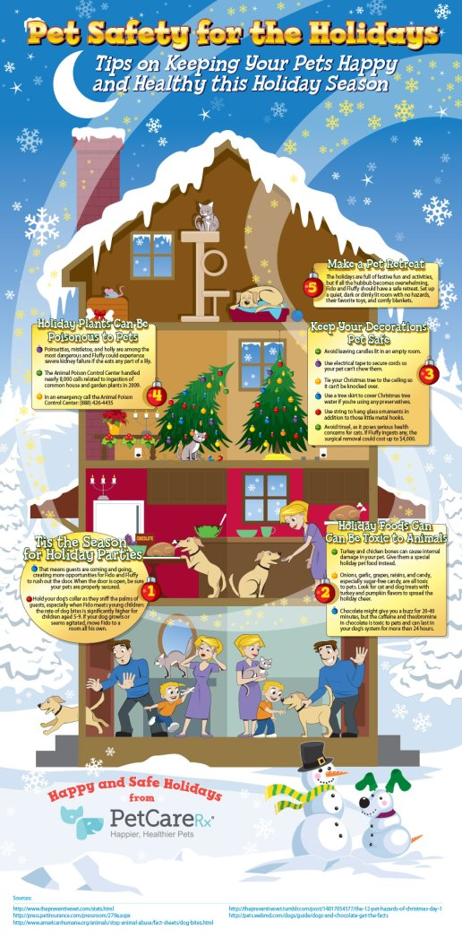 Pet Safety for the Holidays Infographic
