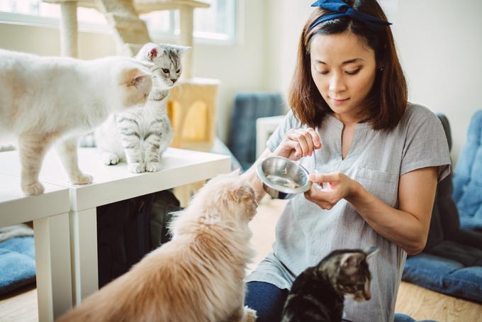 What traits make a great Pet Sitter? Blog PetCloud - pet babysitter