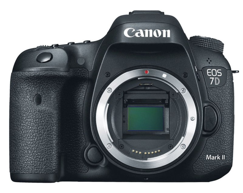 Large Of Slr Direct Review