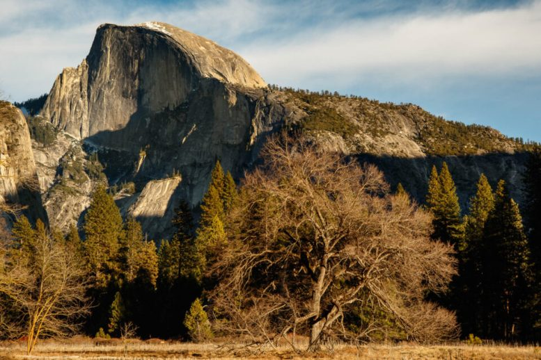 Canon 7D Mark II Image Samples (22)