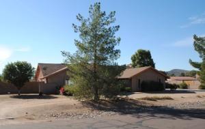 5041 W SAGUARO PARK Lane, Glendale, AZ 85310