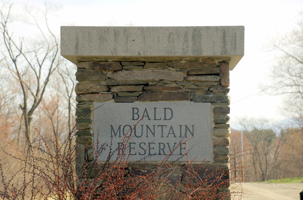 Bald Mountain Rd, Austerlitz, 12017 Stone House Properties, LLC