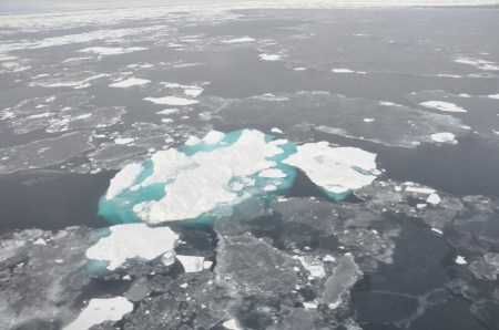 Processes And Impacts Of Arctic Amplification