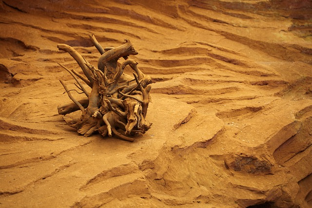 Desert Landscape Wallpaper Hd Dead Desert Drought 183 Free Photo On Pixabay