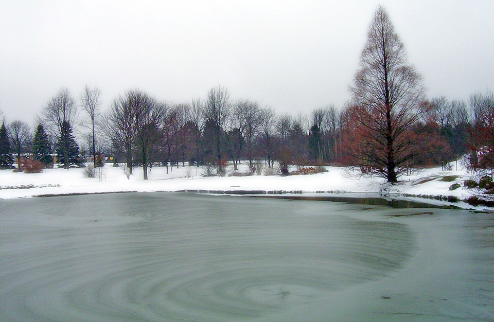 Medical Wallpaper Hd Free Photo Frozen Pond Park Ice Winter Free Image