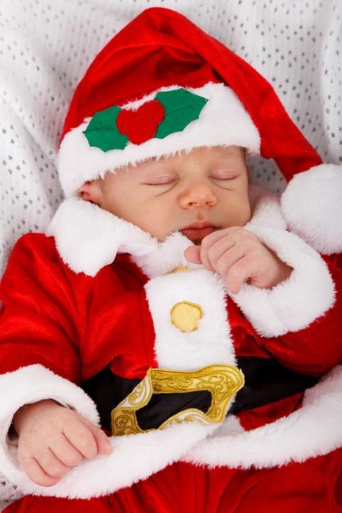 Cute Christmas Kitten Wallpaper Free Photo Adorable Baby Celebration Child Free