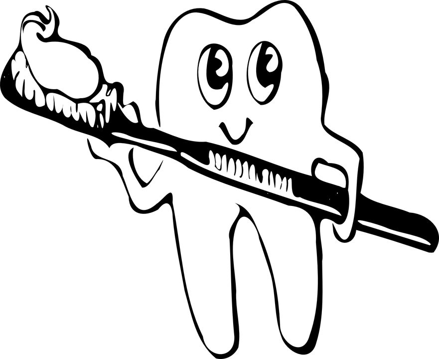 Malerpinsel Clipart Toothbrush Brush Hygiene · Free Vector Graphic On Pixabay