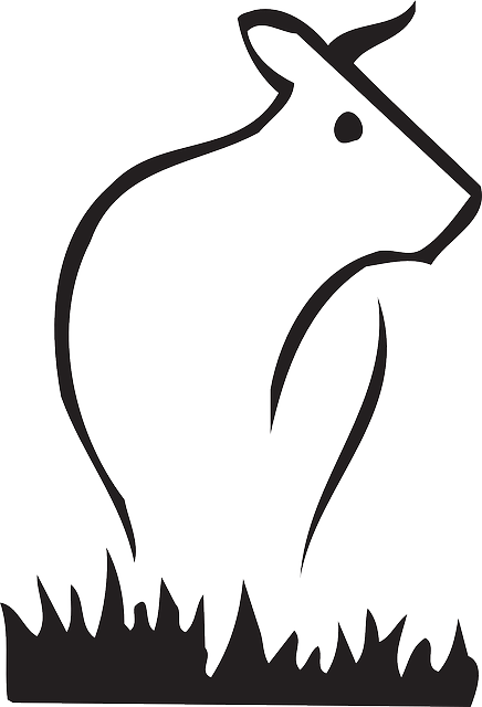 Animal Farm Wallpaper Kuh Rinder Vieh 183 Kostenlose Vektorgrafik Auf Pixabay