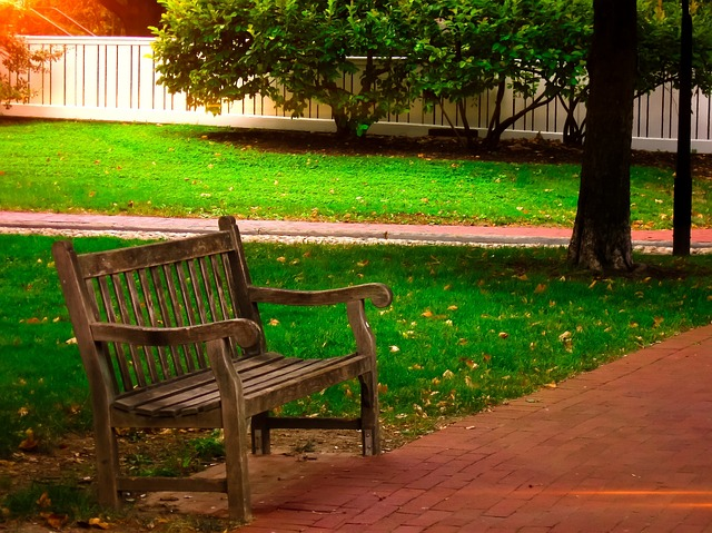 Cute Creative Wallpapers Free Photo Bench Wooden Park Bench Park Free Image