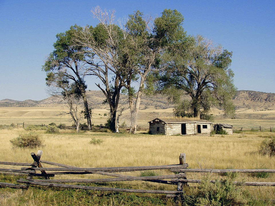 Old Car Wallpaper Download Wyoming Meadow Grass 183 Free Photo On Pixabay