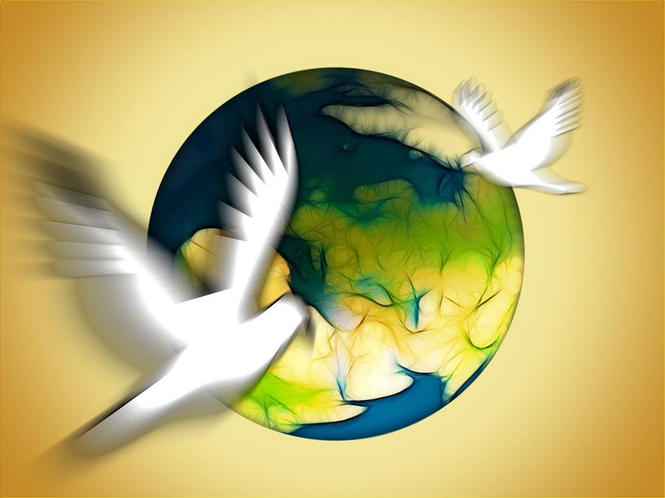Hd Pigeon Wallpaper Kostenlose Illustration Tauben Frieden Symbol Globus