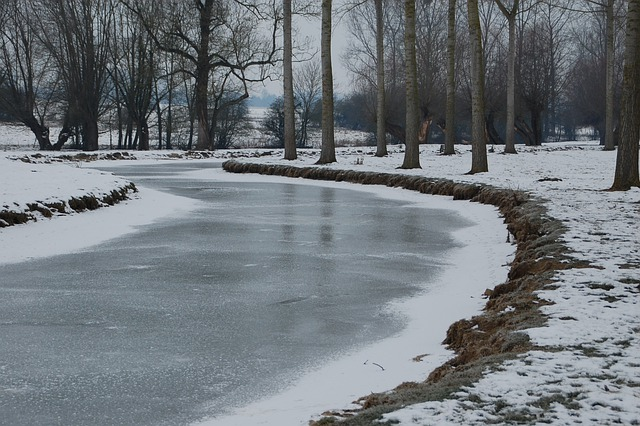 Free Animal Wallpaper Download Free Photo Frozen River River Nature Free Image On