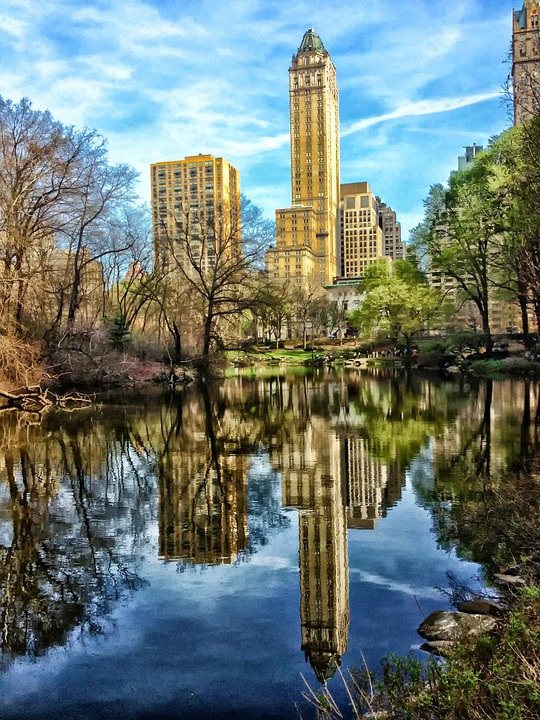 4k Fall Wallpaper Free Photo Central Park New York City Free Image On
