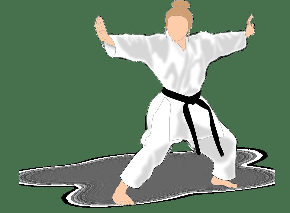 Fight Like A Girl Computer Wallpaper Free Vector Graphic Kata Karate Martial Arts Girl