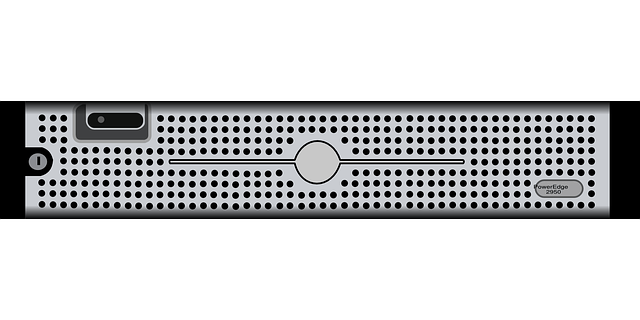Cute Black Wallpaper Dell Connector Front 183 Free Vector Graphic On Pixabay