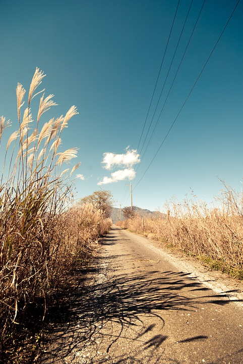 Space Hd Wallpapers 1080p Free Photo Road Path Pathway Rural Free Image On