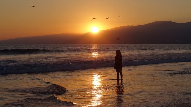 Alone Girl In Beach Wallpaper Free Photo Human Person Beach Sea Sunset Free Image