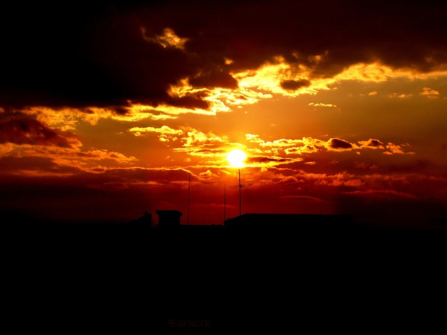 Beautiful Animal Pictures Wallpaper Free Photo Sunrise Sun Golden Clouds Dark Free
