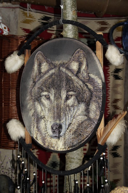Child Wallpaper Hd Free Photo Indians Dream Catcher Wolf Free Image On