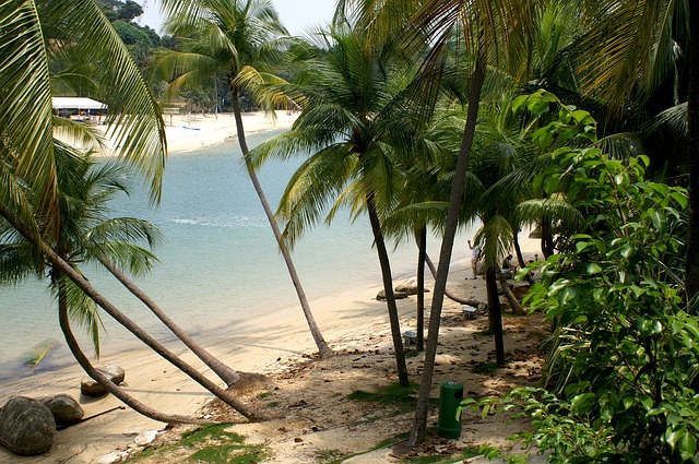 Black And Pink Wallpaper Free Photo Tropical Beach Bay Secluded Free Image On