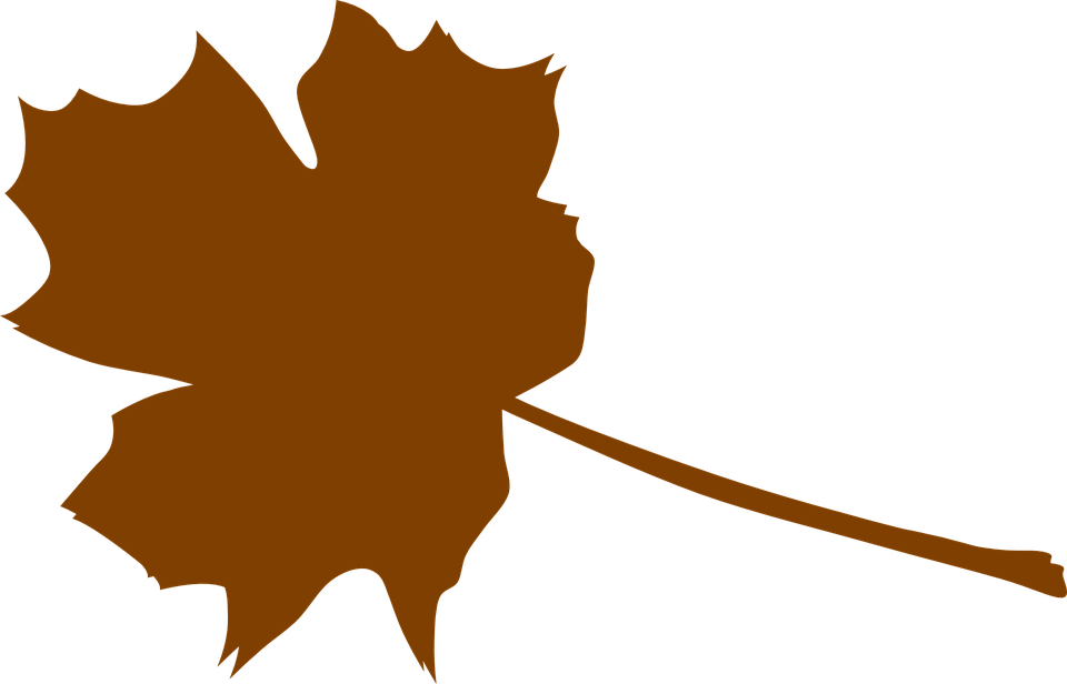 Falling Maple Leaves Wallpaper Maple Brown Plant 183 Free Vector Graphic On Pixabay