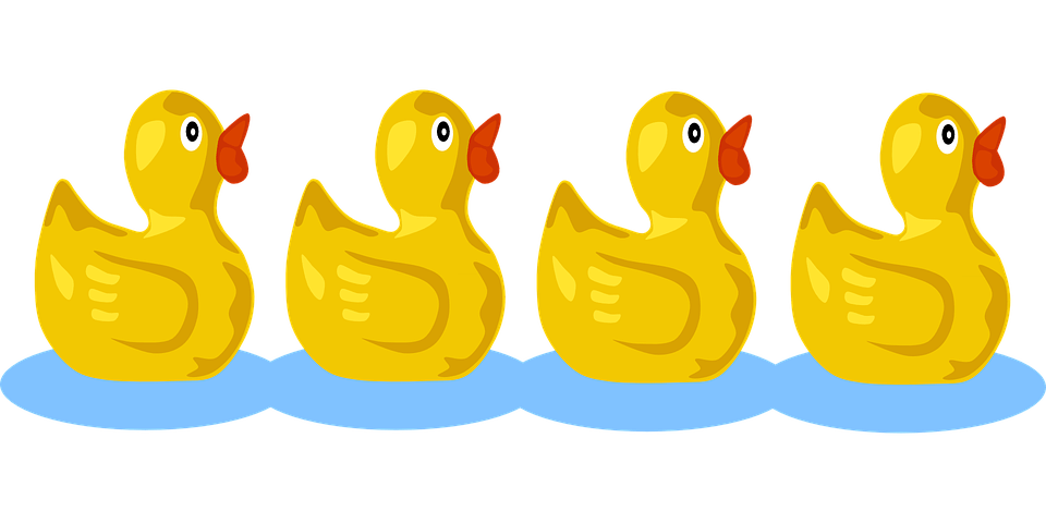 Cute Duckling Wallpaper Ducklings Squeaking Follow 183 Free Vector Graphic On Pixabay