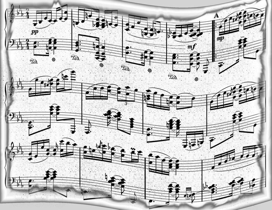 Black Daisy Wallpaper Free Illustration Music Paper Background Design Free