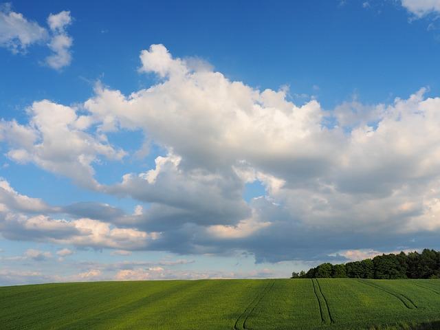 Wallpaper Hd Portrait Orientation Free Photo Blue Sky Clouds Field Landscape Free