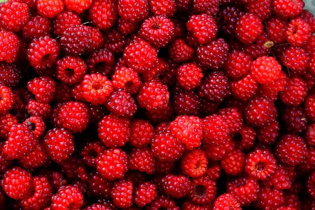3d Wallpaper Editor Free Photo Raspberry Red Berry Fruit Wild Free
