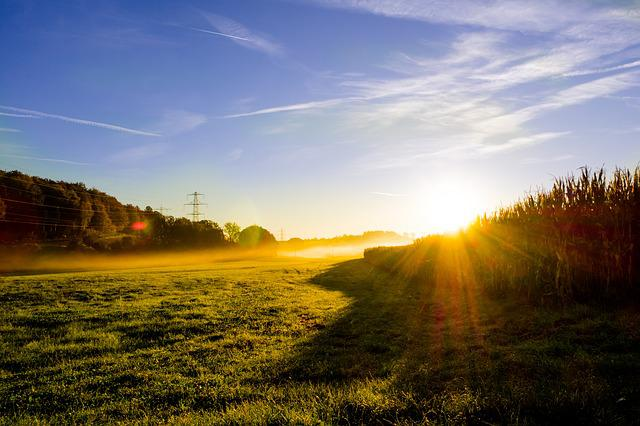 Animated Thanksgiving Wallpaper Meadow Sunrise Morning Mist 183 Free Photo On Pixabay