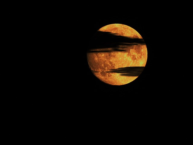 Rose Flower Wallpaper Hd Free Download Free Photo Moon Night Clouds Night Photo Free Image