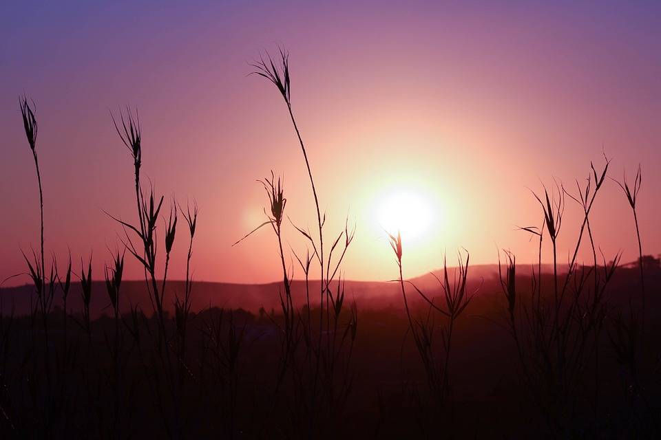 Peace Hd Wallpapers Free Download Free Photo Sunset Silhouette Landscape Free Image On