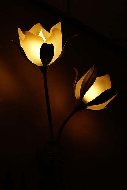 Black And Blue Wallpaper Free Photo Lamp Flower Light Lamps Free Image On