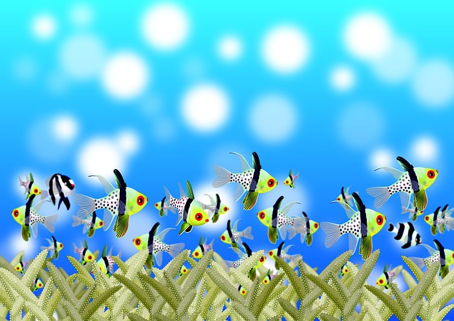 Fish Animation Wallpaper Free Download Free Illustration Pisces Underwater World Free Image