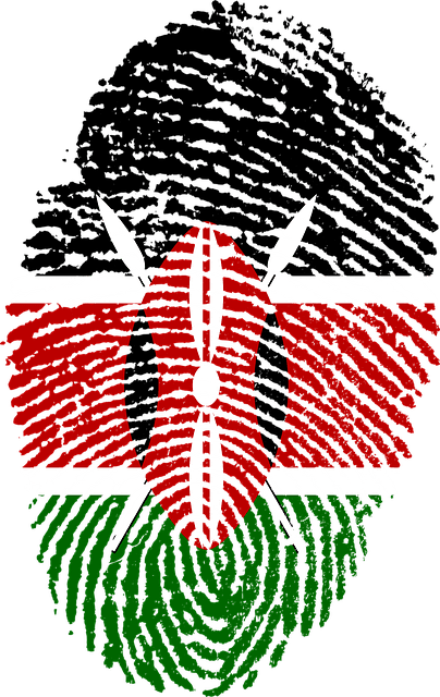 3d Wallpaper Editor Kenya Flag Fingerprint 183 Free Image On Pixabay