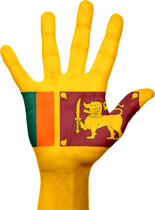 Black And Pink Flower Wallpaper Free Illustration Sri Lanka Flag Hand National Free