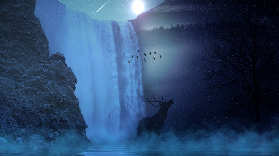 Fall Mountain Lake Wallpaper Free Photo Hirsch Wild Sun Moon Star Free Image On