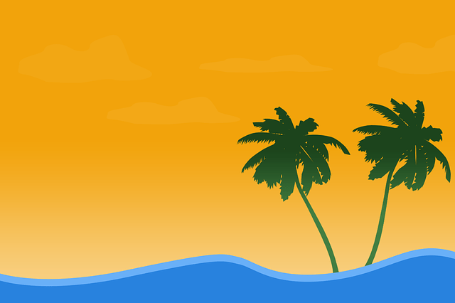 Hd Wallpaper Music 3d Summer Beach Coconut Trees 183 Free Image On Pixabay