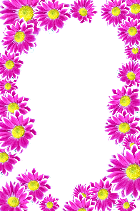 Cute Bordered Pastel Flower Wallpaper Flowers Purple Isolated 183 Free Image On Pixabay