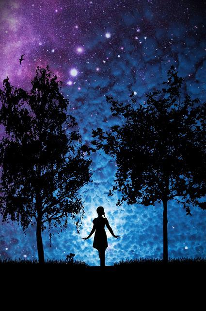 Girls Walking In Public Wallpapers Free Photo Star Woman Trees Silhouette Free Image On